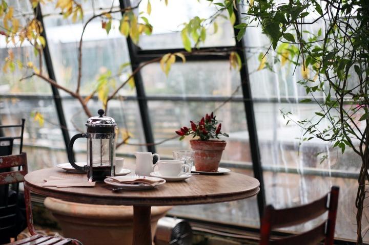 https://pixabay.com/en/conservatory-coffee-plants-table-1031494/