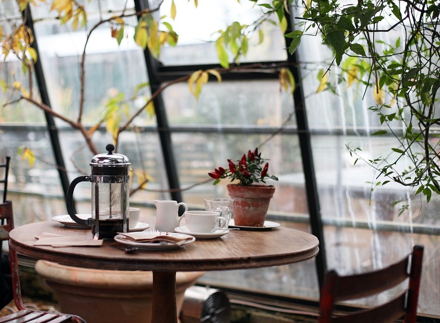 https://pixabay.com/en/conservatory-coffee-plants-table-1031494/