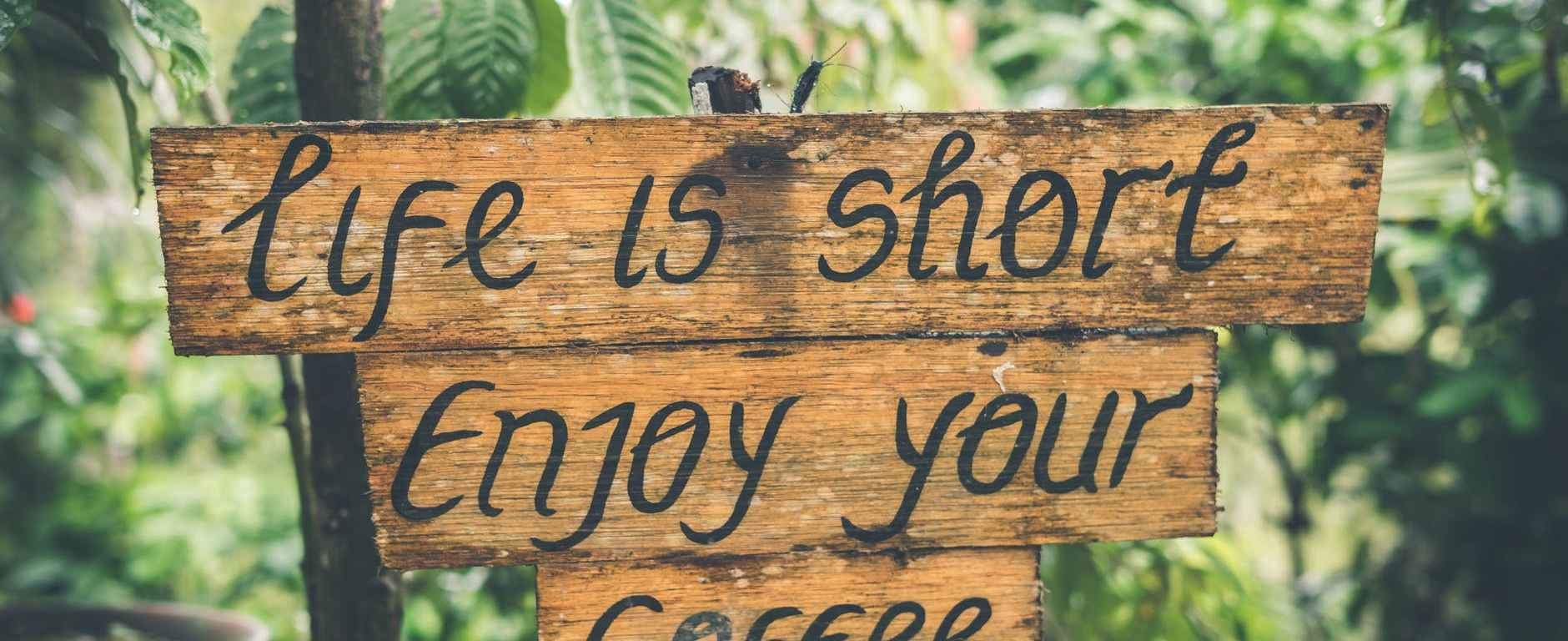 coffee quote wooden sign vegetation