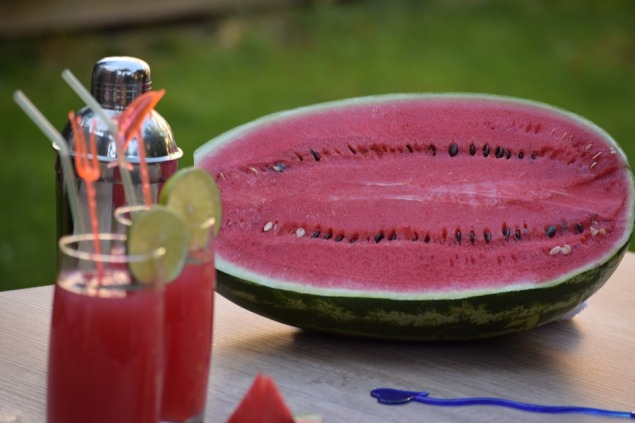 half sliced open watermelon with two tall glasses of watermelon drink garnished with lemon slices