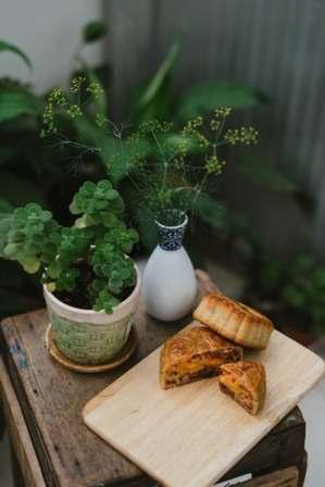 autumn favourites outdoor eating