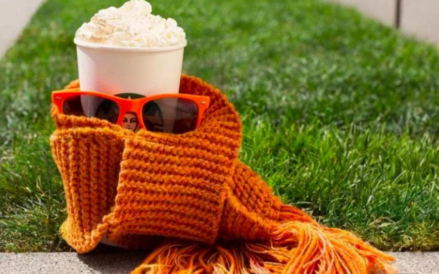 pumpkin spice lattes scarf and shades
