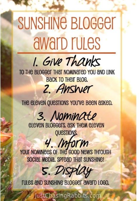 3rd sunshine blogger award rules