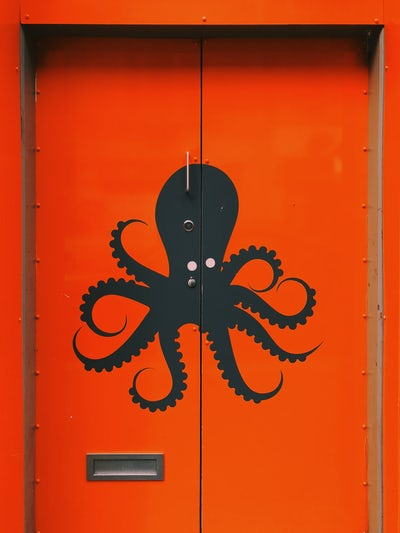 daily three nov 5 octopus on red door