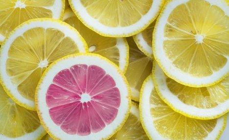 queen of questions lemon slices