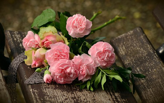 5 reasons to avoid the hype of valentine's day pink roses