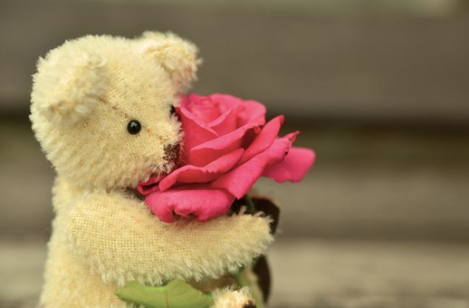 5 reasons to avoid the hype of valentine's day teddy