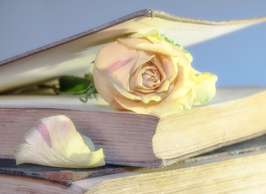 genre challenge # 9 romance rose books