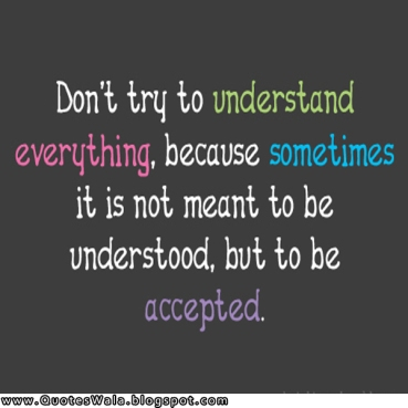 don't try to understand everything quote