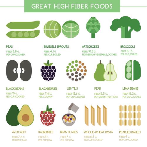 veggie fibre