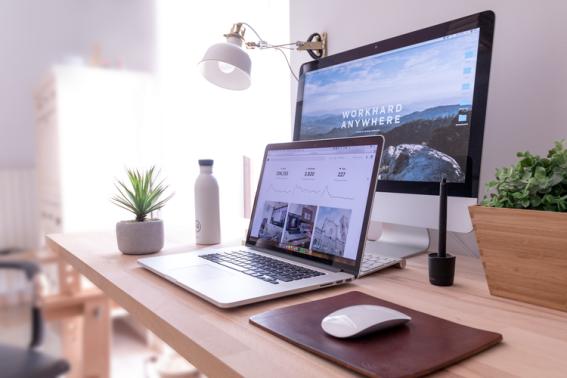 plant monitor laptop