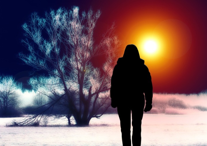 Silhouette Woman Tree Landscape Surreal Snow
