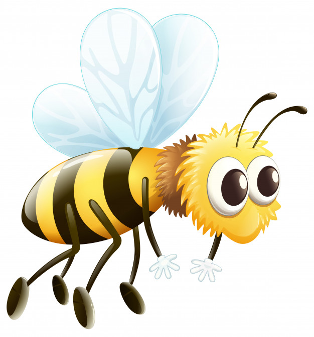 honey bee looking tired