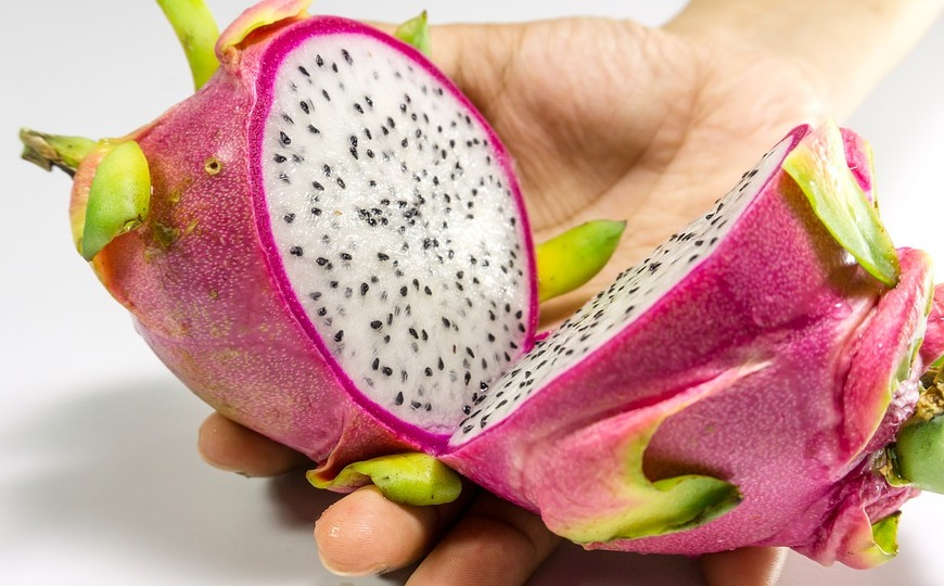 dragon fruit cut in half held in hand