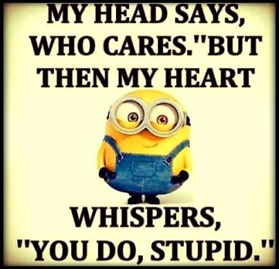 365906-My-Head-Says-Who-Cares