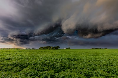 grey clouds green meadow