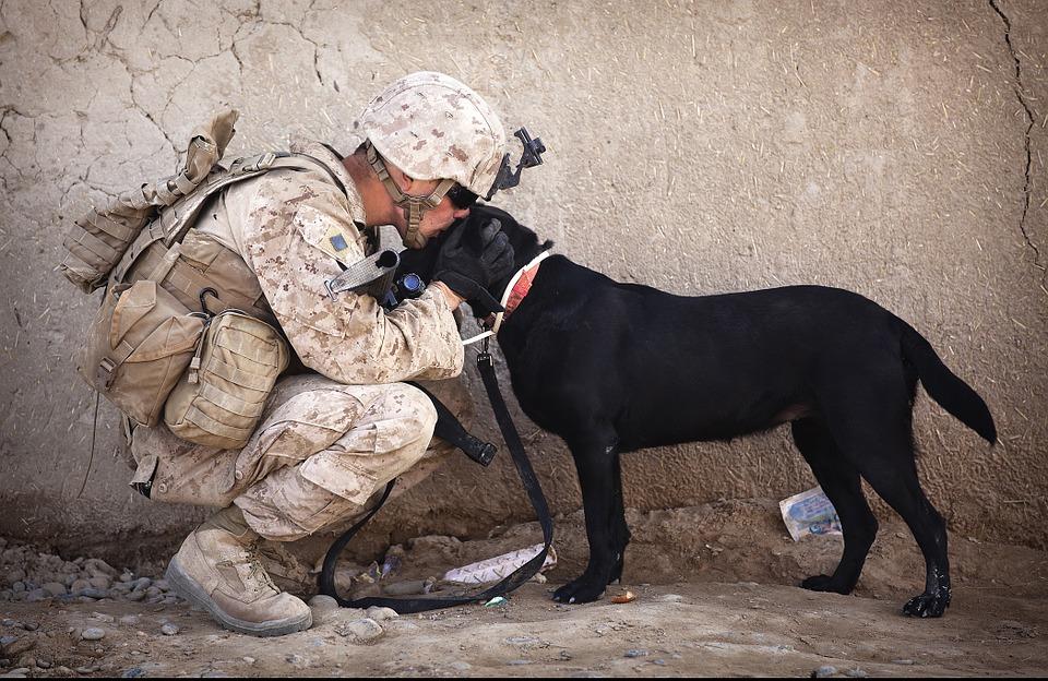 soldier kissing black dog
