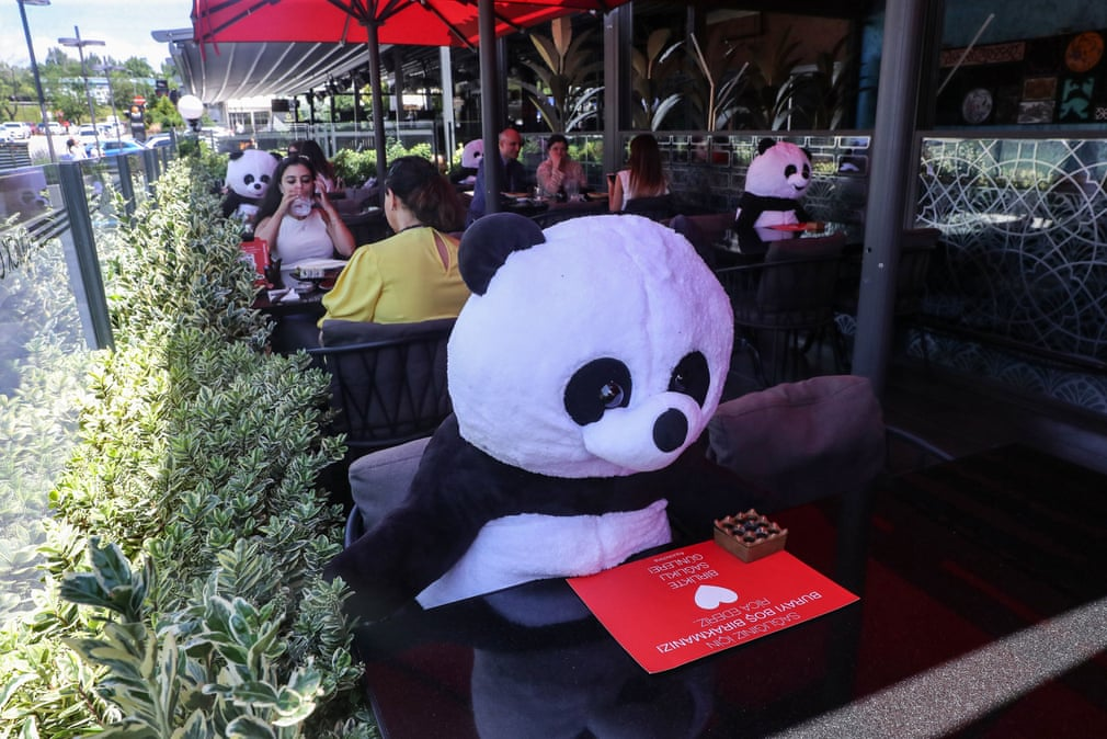 toy pandas for social distancing in restaurants