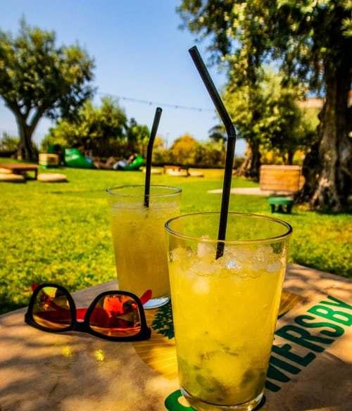 sodas at picnic