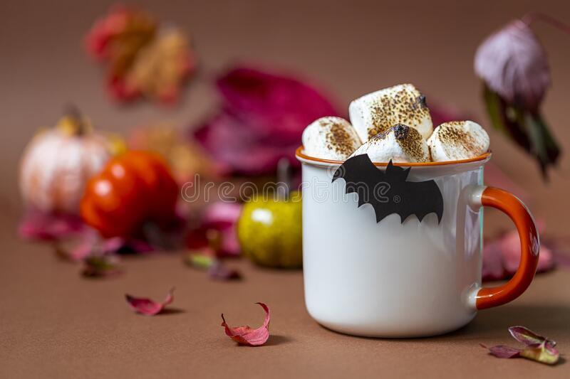 cup-hot-chocolate-marshmallow-tasty-hallowehot chocolate with marshmallows