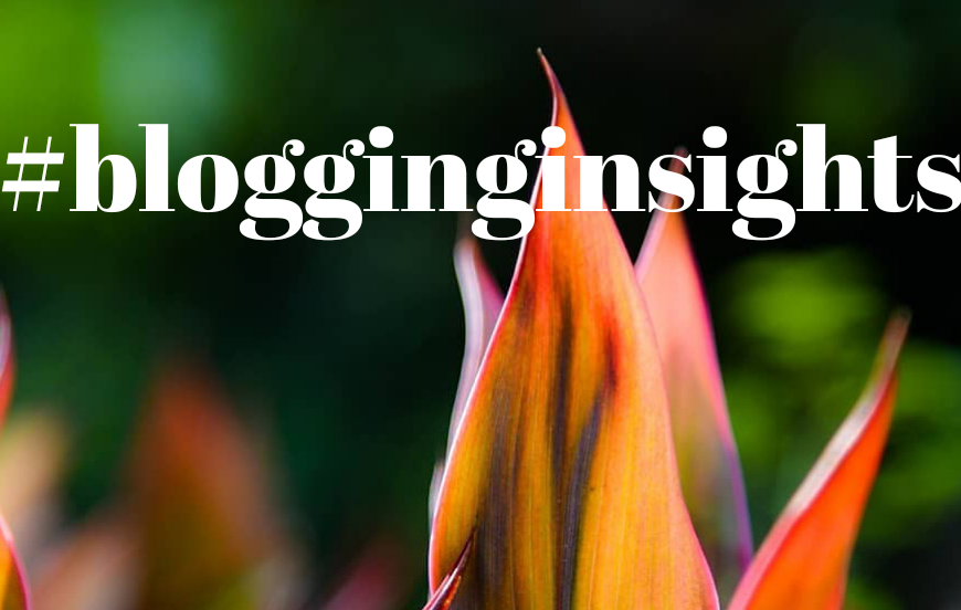 blogging insights banner